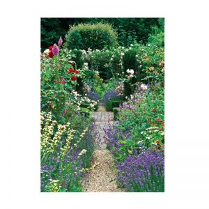 Garden Path Birthday Card