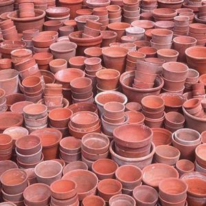 Plant Pots Wrapping Paper