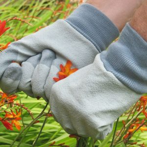 RHS Tough Tips Garden Gloves, Grey, Large