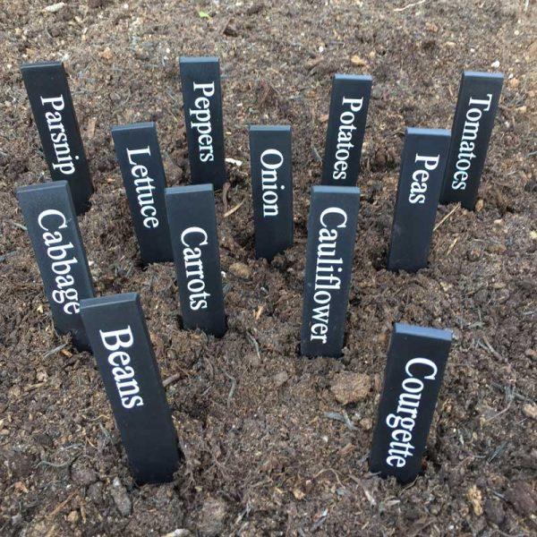 veg plant labels