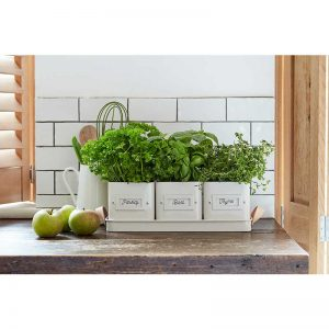 garden supplies herb pots