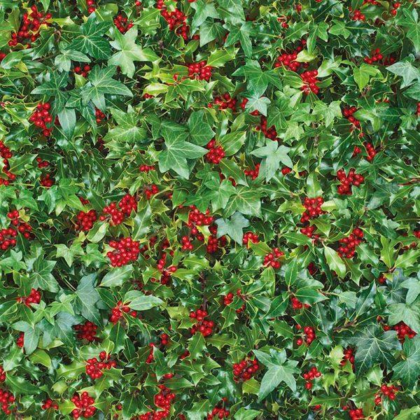 holly-ivy-wrap